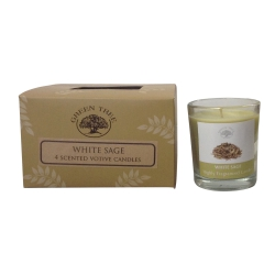 Green Tree - White Sage 4 Scented Votive Candles
